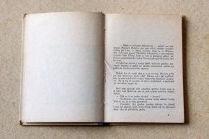 sherlock-holmes-weiner-kral-kniha_mg_9844